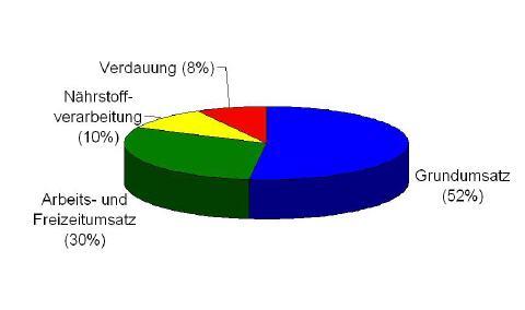 grundumsatz1