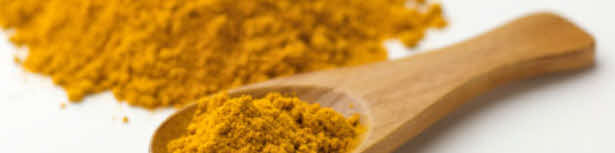 Kurcuma (auch Curcuma longa, gelber Ingwer oder Safran genannt)