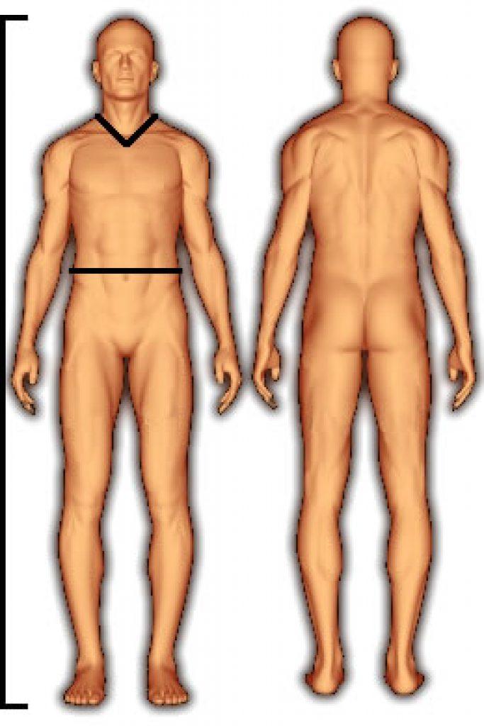 body_fat_us_navy_male-1-683x1024