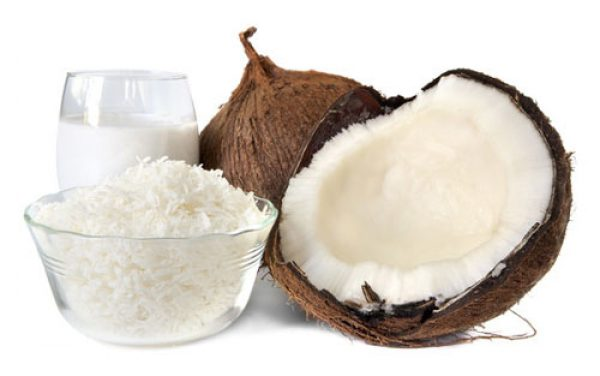 kokosmilch der stoffwechselturbo