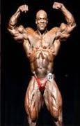 bester bodybuilder 2000