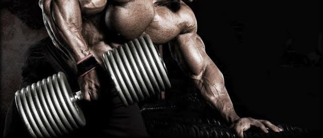 bodybuilding anfänger trainieren tipps