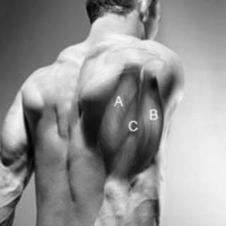trizeps workout für einen dicken oberarm