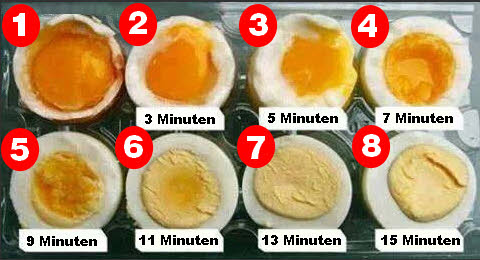 Eier kochen f r den muskelaufbau was ist mit dem cholesterin - Eier weich kochen minuten ...