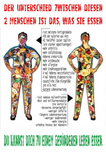 endlich gesund ernähren und abnehmen
