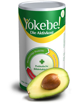 amapur vs. yokebe welche ist die beste diät