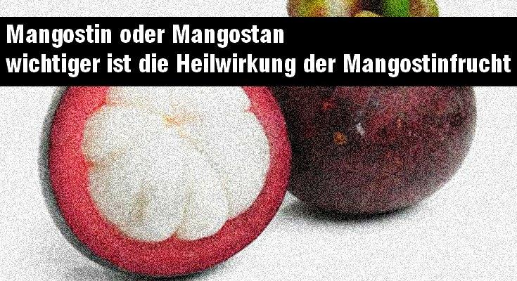 Mangostin vielfältige Heilwirkung
