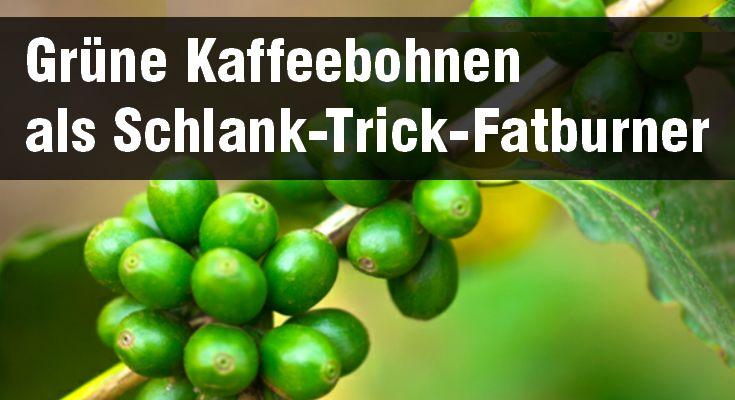 grüne kaffeebohnen idealer fettburner zum abnehmen