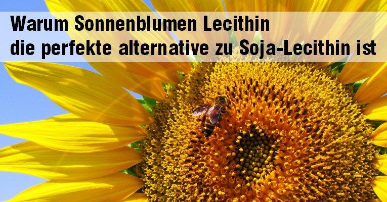 Wirkung von Lecithin im Körper
