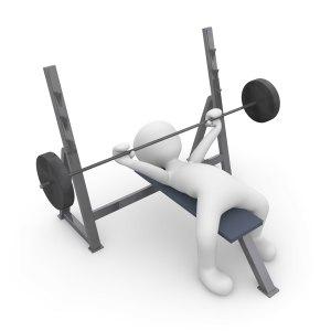 Trainingsgerät oder Fitnessmatte welche ist die beste