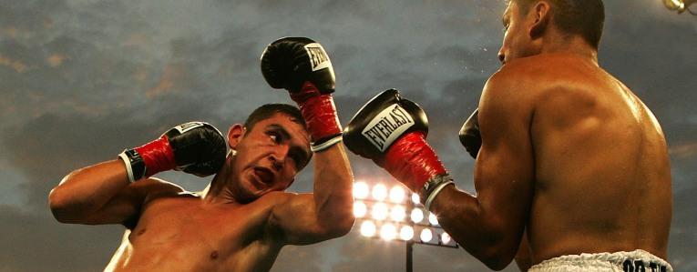Boxernase Symptome und Behandlung